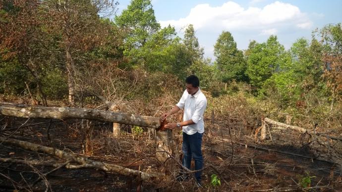 Gia Lai: Vì sao dân phá gần 10 ha rừng phòng hộ?