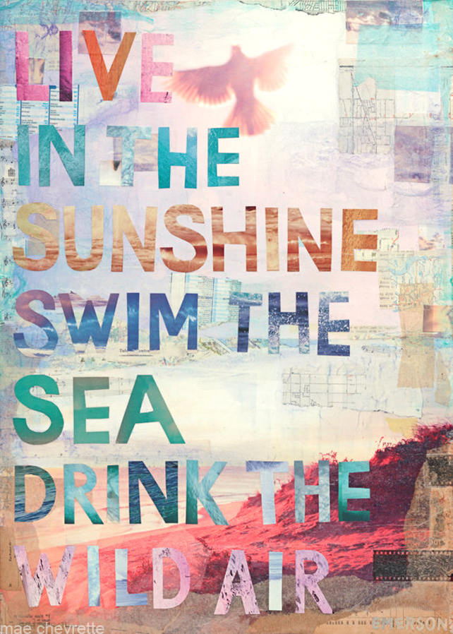 Live in the sunshine, swim the sea, and drink the wild air illustrated by Mae Chevrette