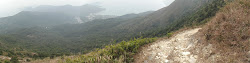 View from a mountain down to Pui Wo.
