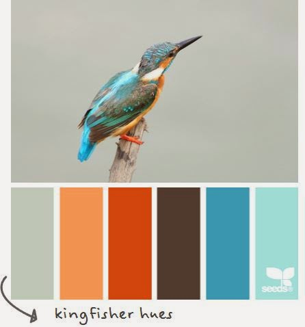 http://design-seeds.com/index.php/home/entry/kingfisher-hues1