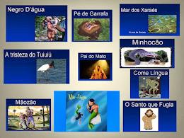 FOLCLORE DE MATO GROSSO DO SUL CLIQUE NA IMAGEM