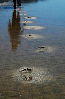 Pegadas na água