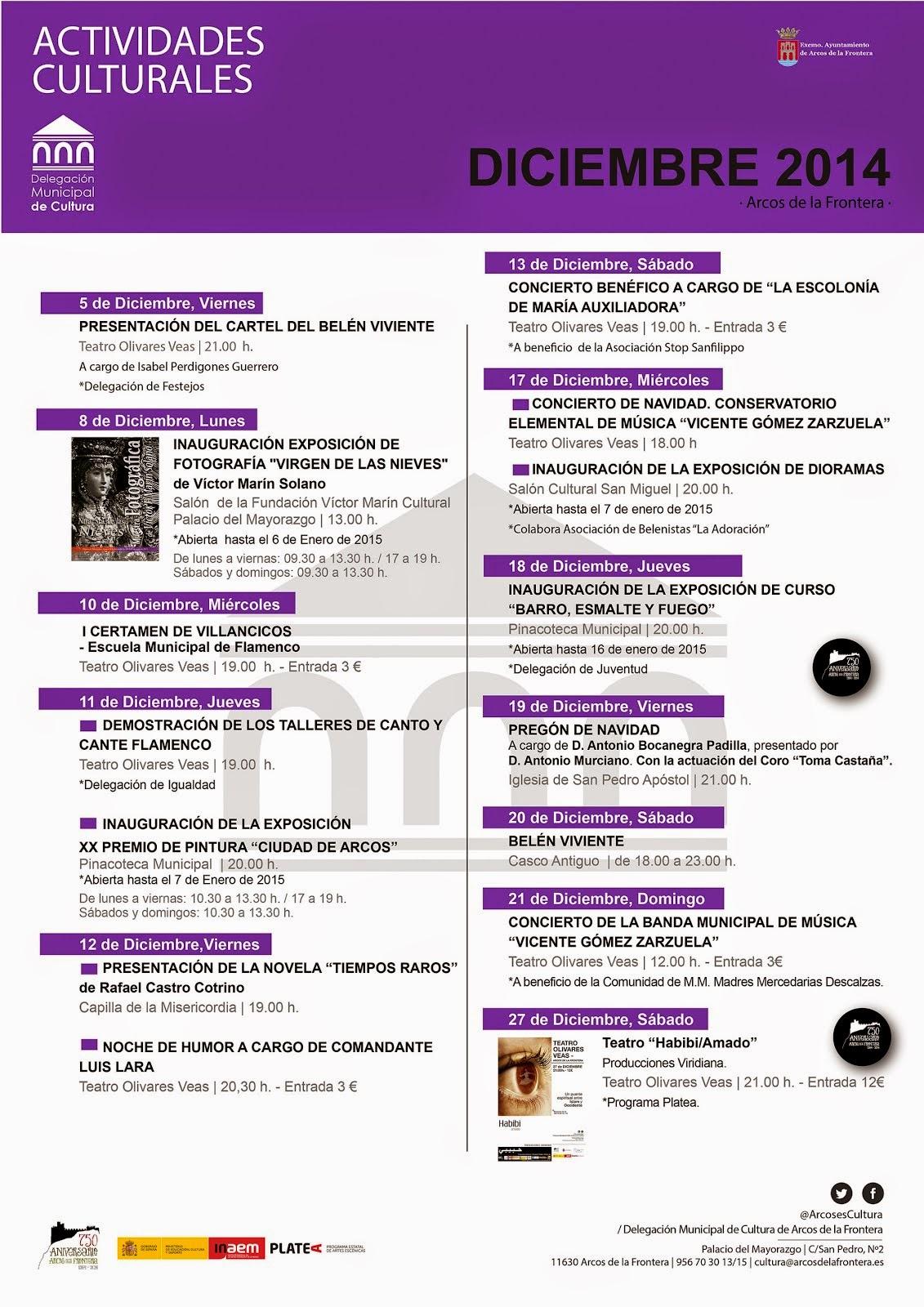 ACTIVIDADES CULTURALES ARCOS DICIEMBRE 2014