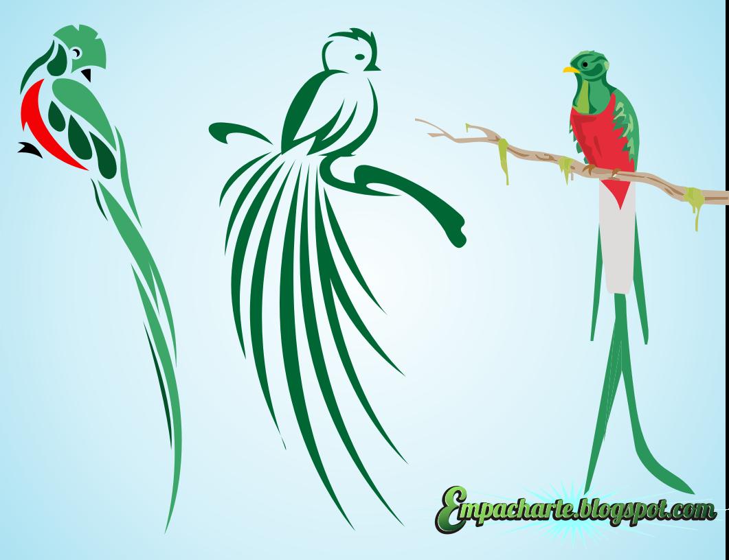Recursos Graficos Muy Chapines |Design|: Quetzal en vector