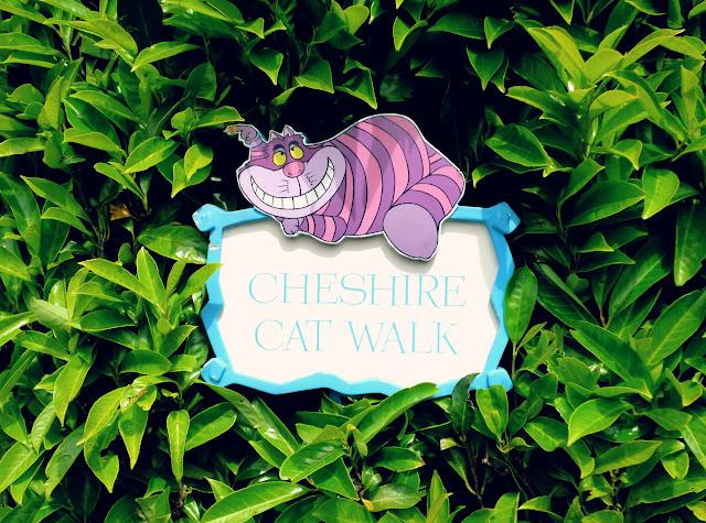 panneau du Cheshire Cat d'Alice au pays des Merveilles