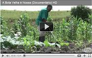 Documentário: A Bota Velha é nossa