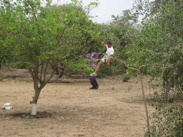 IMG_3333 ▷ La Reserva de Bandia y Accro Baobab Adventures
