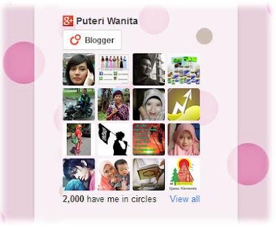 Google Plus G+ Follower Sudah 2000. Terima Kasih Buat Semua