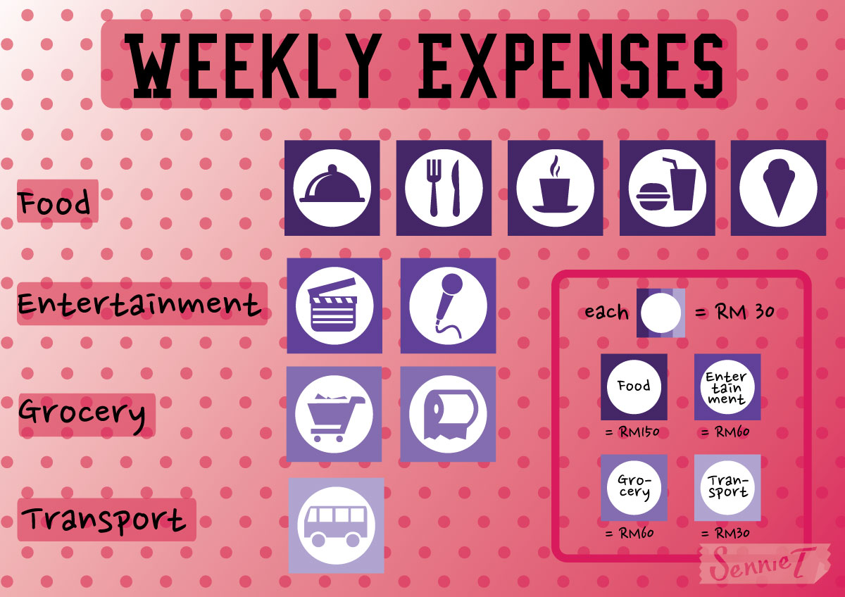 sennie s logbook information design weekly expenses