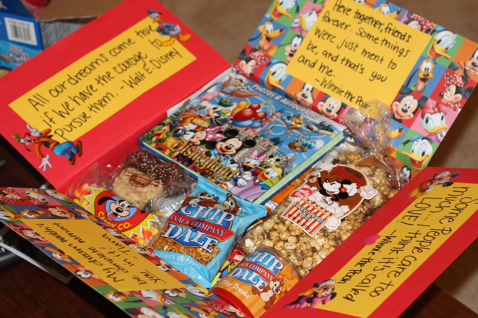 living in the moment: disneyland - care package