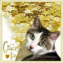 RIP Sweet Gracey
