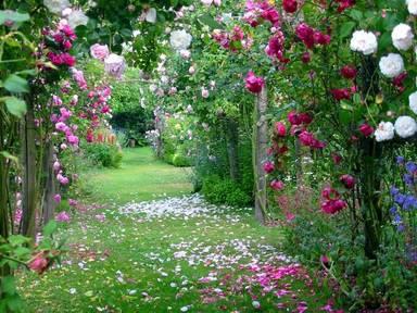Jardins Casas-com-jardins-lindos-5