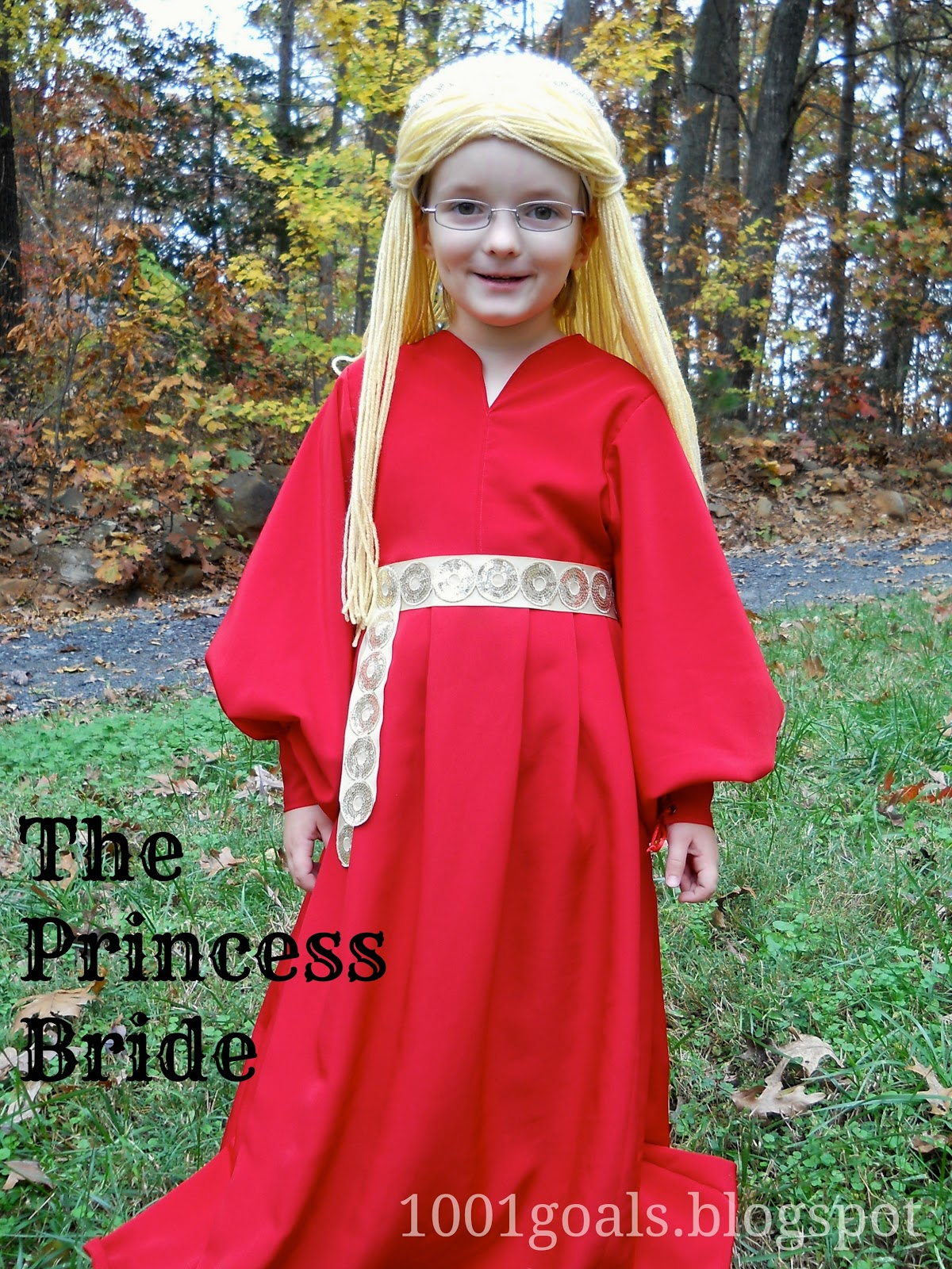 Princess bride adult costume