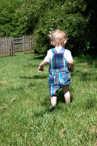 A toddler walking in a garden