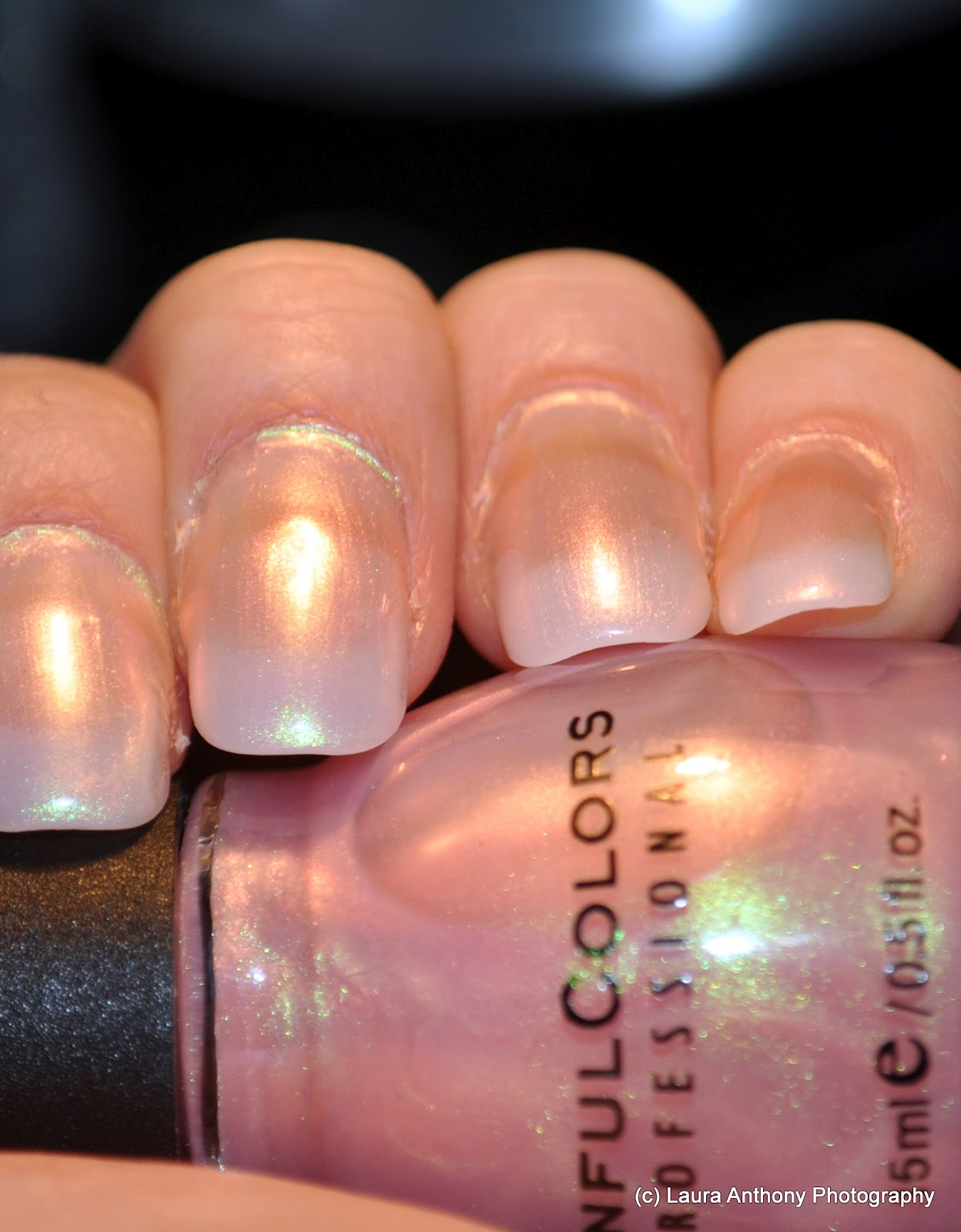 World of Polish: Gel Tips