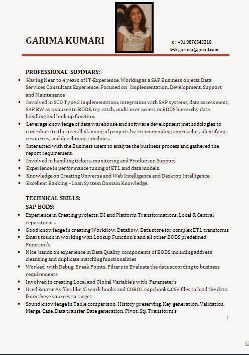 sap bw resume sample resume cv cover letter - Sample Sap Resume