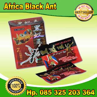 afica black ant,obat kuat africa black ant,obat kuat,obat kuat pria,obat kuat herbal,obat kuat alami,obat kuat sex,obat kuat vitalitas,obat kuat perkasa,obat kuat import,jual obat kuat,ejakulasi dini,mani encer,impoten,lemah syahwat