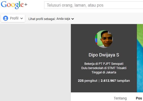 DipoDwijayaS-dipoBlogForce1Blogspotcom-Gambar-StatistikJumlahTampilanProfilDiGooglePlus.png