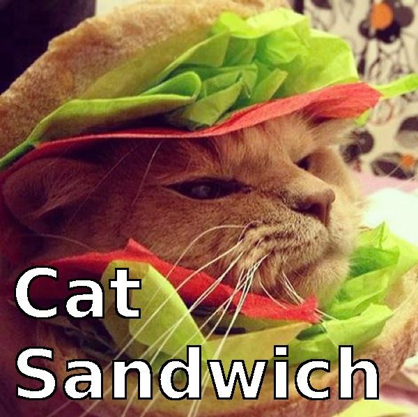 Cat In Costume Meme