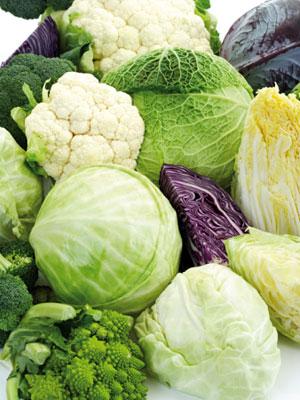 Sayuran_silangan_brokoli_kubis_kol_efektif_mencegah_kanker