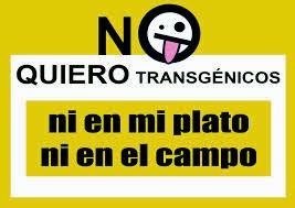 No transgénicos