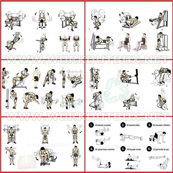Week Mass Building Workout Muscle Strength