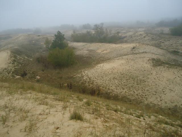 алешковские пески фотографии