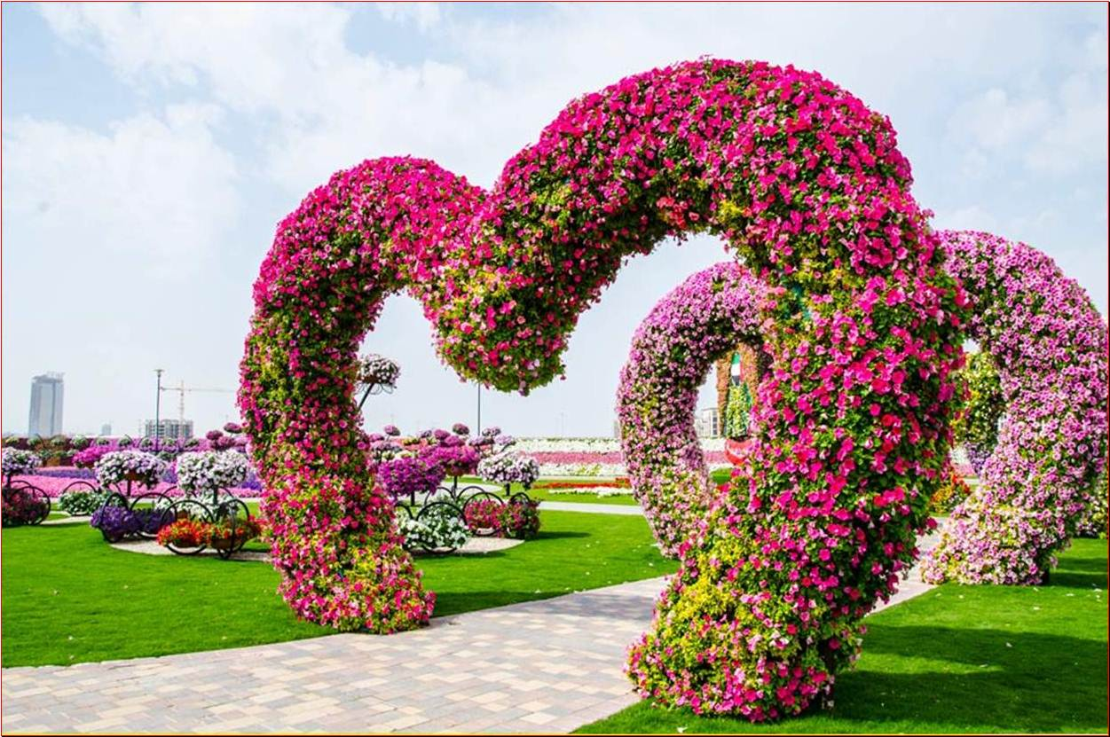 Beautifull love garden love motivation quotes for Gardening is my passion
