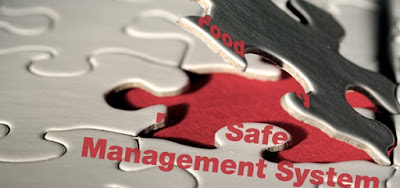 AS/NZS 4801:2001 Safety Management System