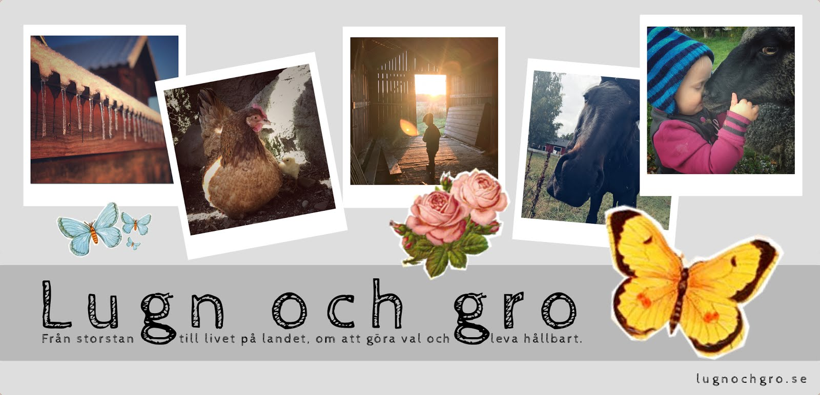 Lugn & gro - en blogg om livet på landet