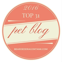 Top 31 pet blogs