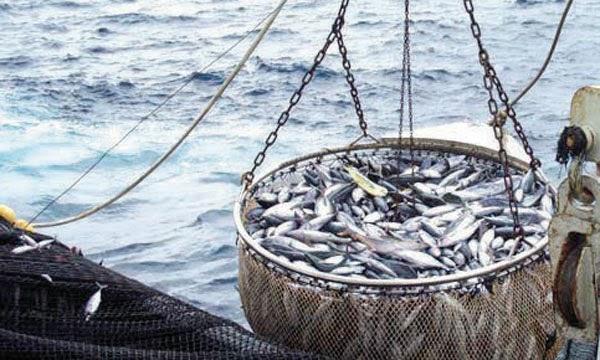 El ilegal acuerdo de pesca UE-Marruecos ratificado por el Rey
