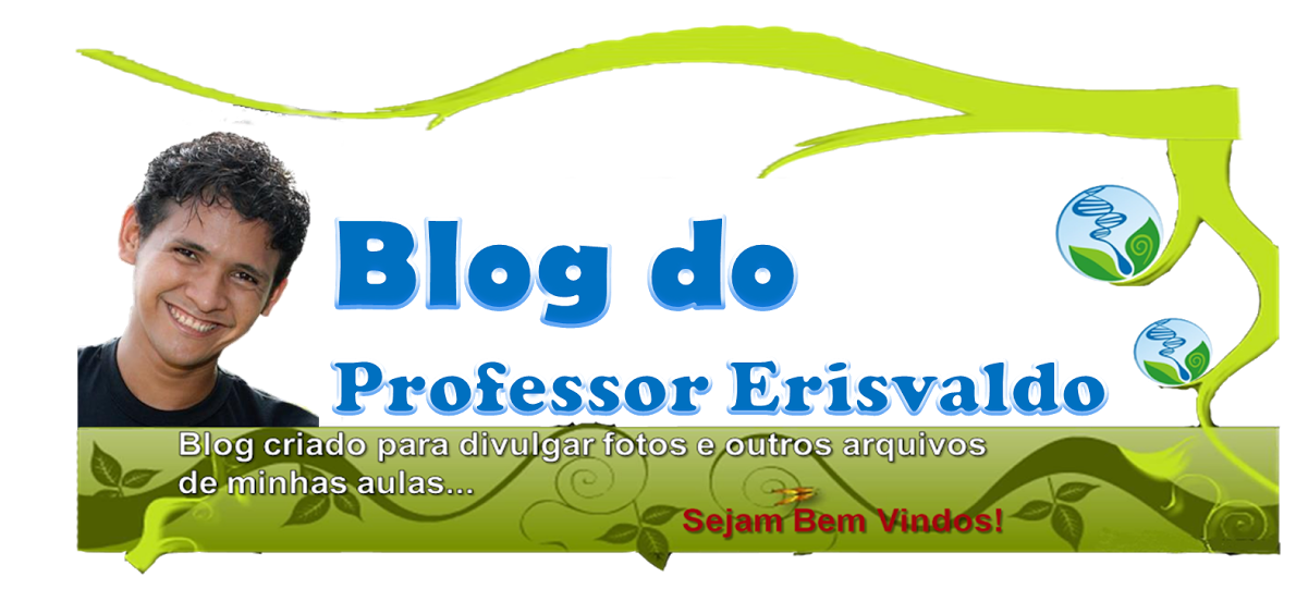 Blog Professor Erisvaldo