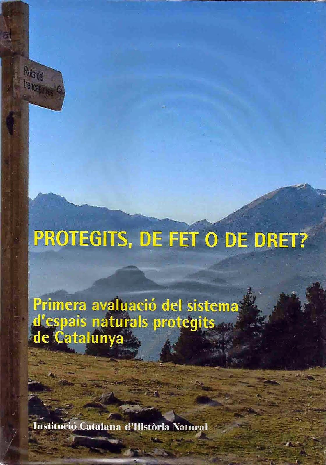 Protegits, de fet o de dret?