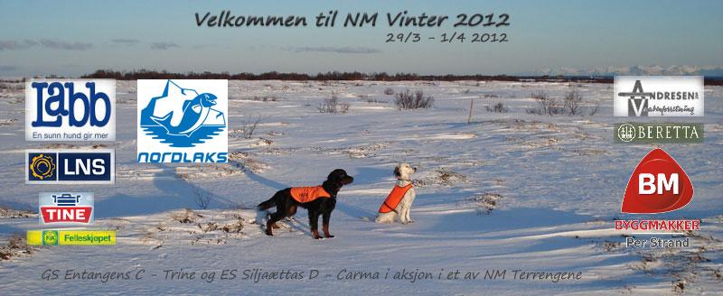 NM Vinter 2012