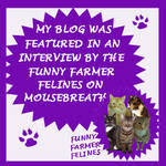 MADI&#39;S MOUSEBREATH INTERVIEW