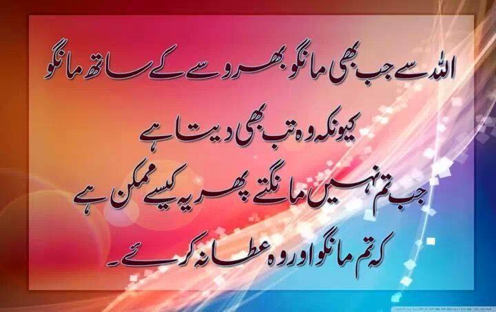 essay maa urdu language