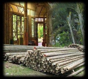 Estructura de Bambù