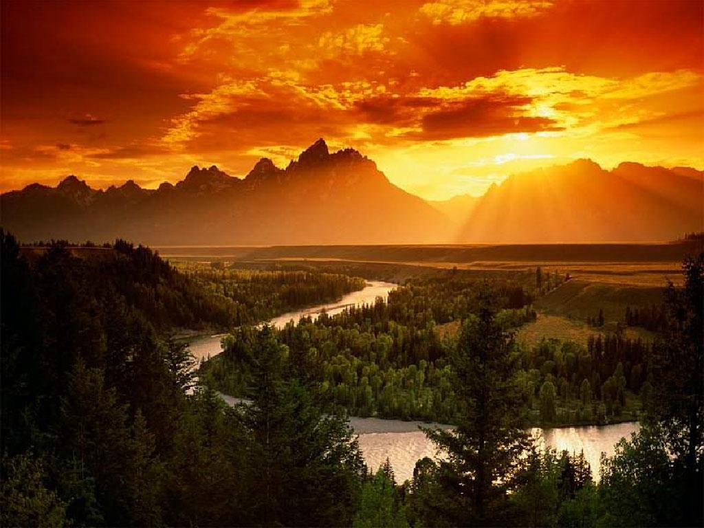 Fotos de paisajes naturales Ecología Verde - imagenes de paisajes naturales con animales