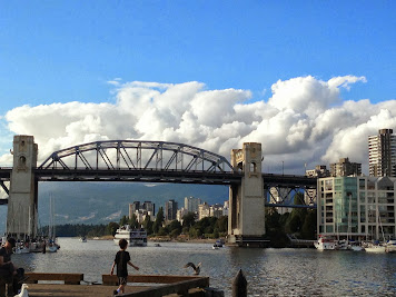Calvin Chasing a Seagull Near the Burrard Bridge