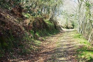 Taramundi, ruta de los molinos, aspecto del sendero