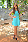 Raashi khanna at jil trailer launch-thumbnail-20