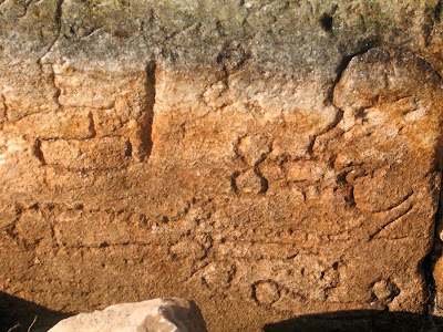 Ancient graffiti sheds light on daily life