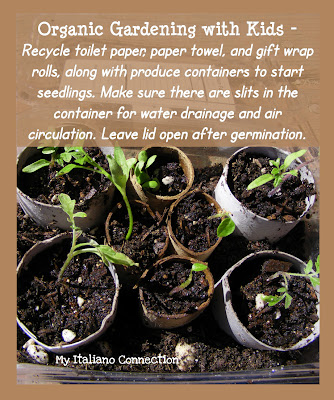 Organic Garden Seedlings started with recyclables