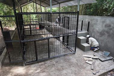 Cage repas + passage à l'enclos