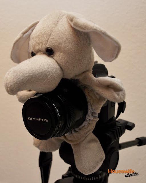 Stuffed Animal for Camera Lens