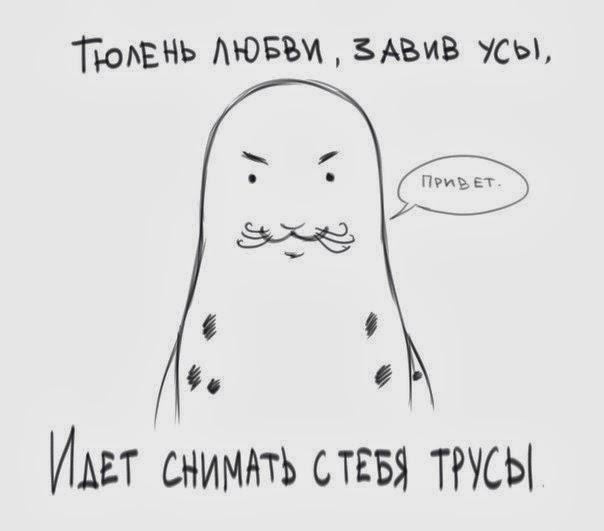 Тюлень любви завив усы идет снимать с тебя трусы