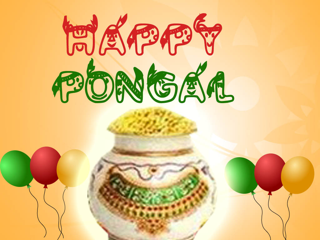 Staytune2 Pongal Greetings 2013