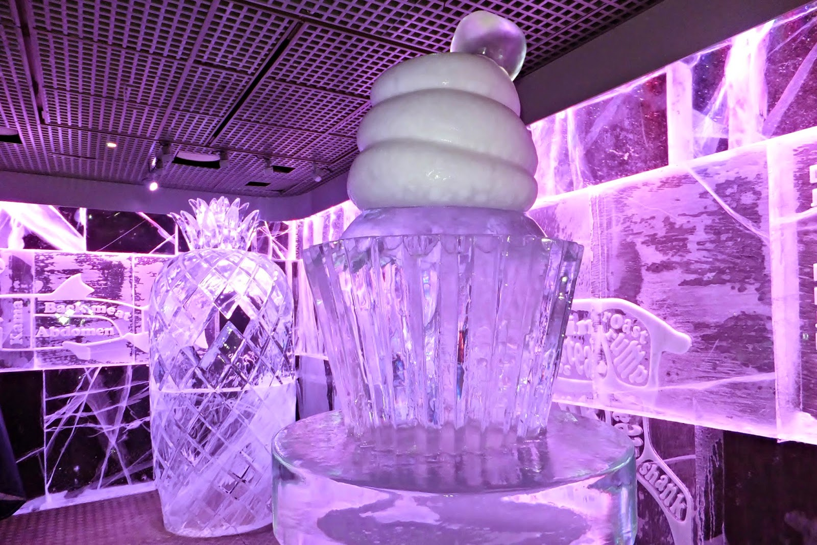 London, Ice Bar, Experience, Review