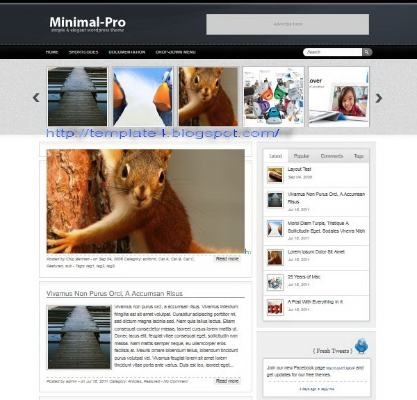 Minimal Pro